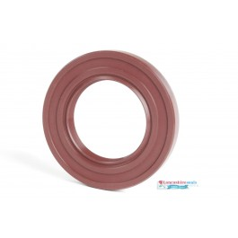 48x110x12mm Viton Rotary Shaft Oil Seal R23/TC Double Lip With Stainless Steel Spring